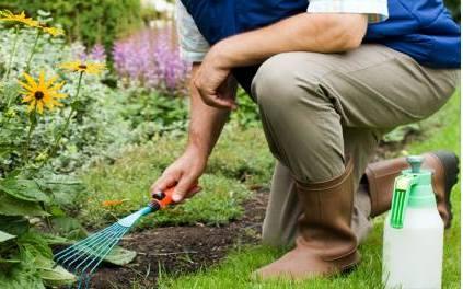 Jacareí oferece 50 vagas em curso de jardinagem gratuito