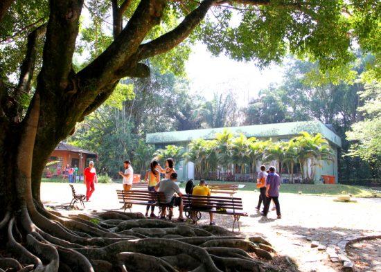 Sétima edição do Seminário de Educação Ambiental do Vale do Paraíba acontece nesta quinta em Jacareí