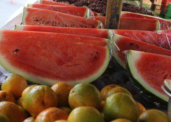 Prefeitura abre licitação para implantar Agricultura Familiar