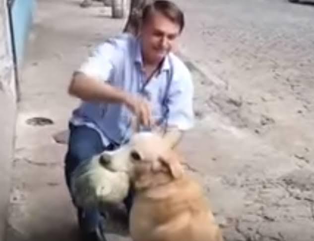 Bolsonaro anuncia criação de Secretaria dos Animais