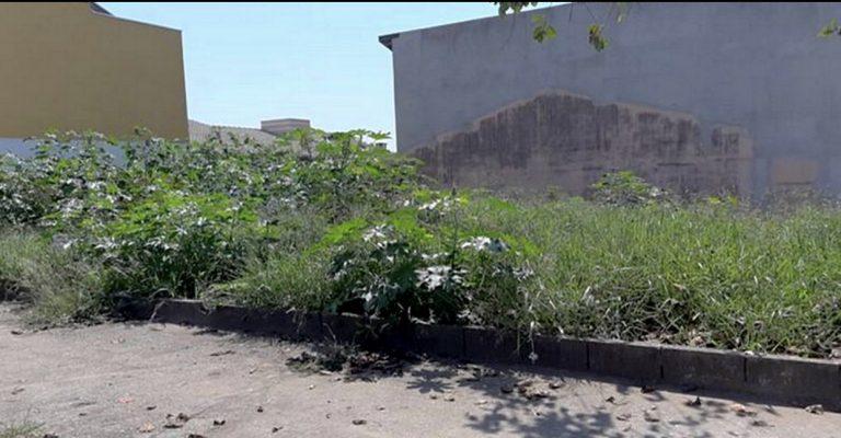 Vereadora pede limpeza em terrenos do Residencial Santa Paula
