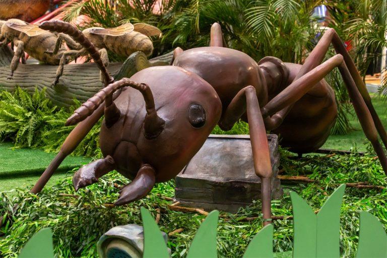 Com insetos de até seis metros, shopping recebe exposição 'Natureza Gigante'