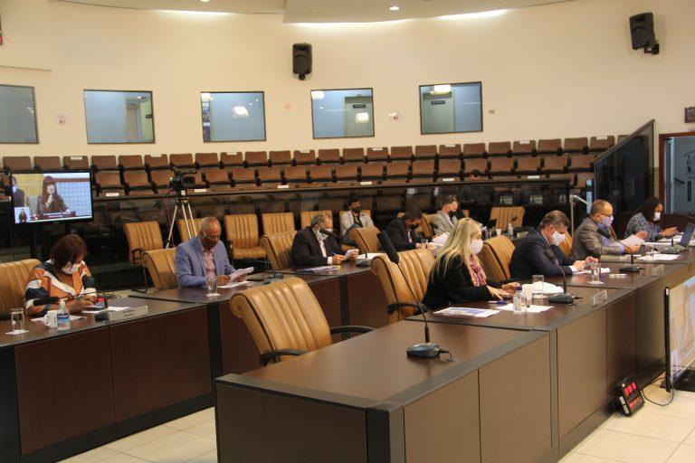 Câmara aprova alvará provisório para venda de produtos para o combate à pandemia