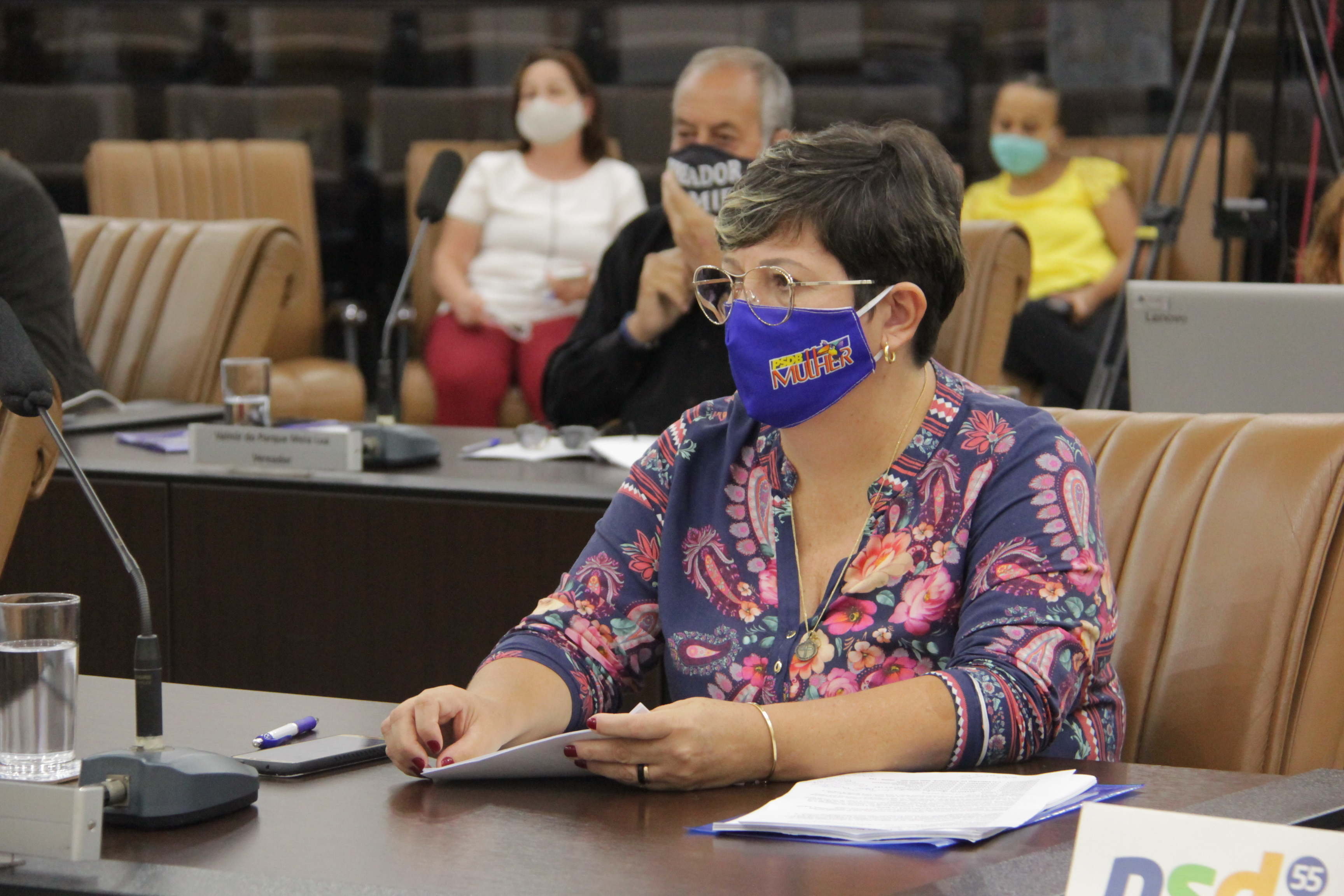 Vereadora pede redutores de velocidade em rua no Jardim Santa Maria