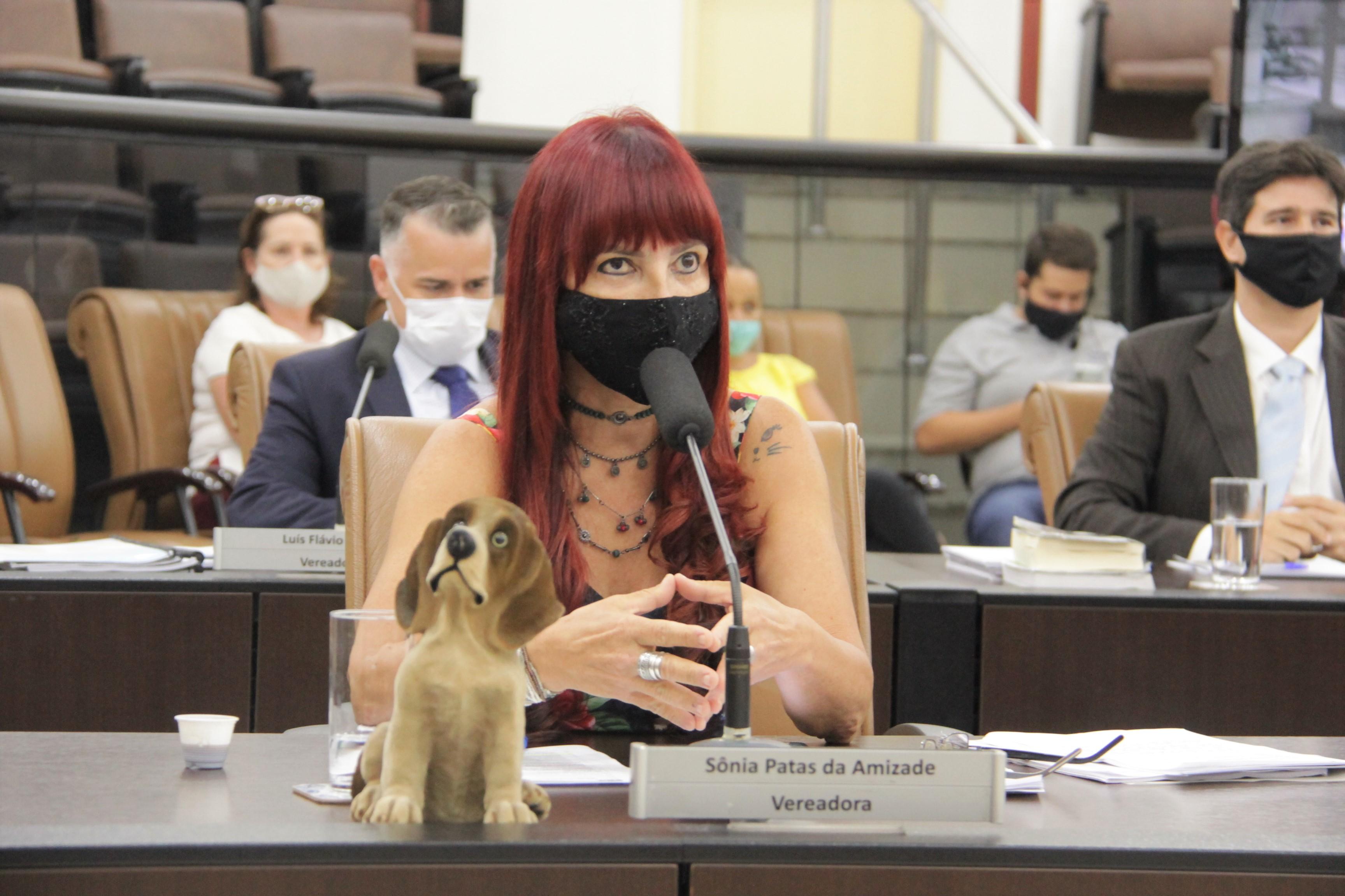 Sônia questiona efetividade da lei de proteção animal à Secretaria de Meio Ambiente