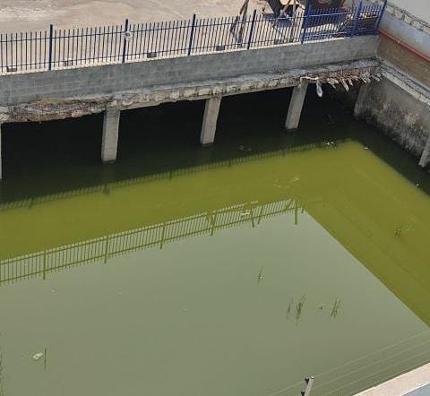 Moradores denunciam foco de água parada em supermercado de Jacareí
