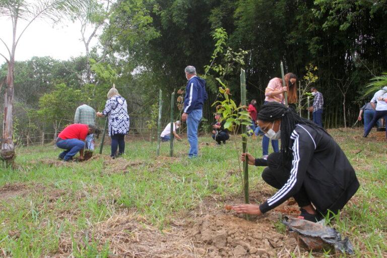 Chegada da primavera é celebrada com plantio de 50 mudas de árvores em Jacareí